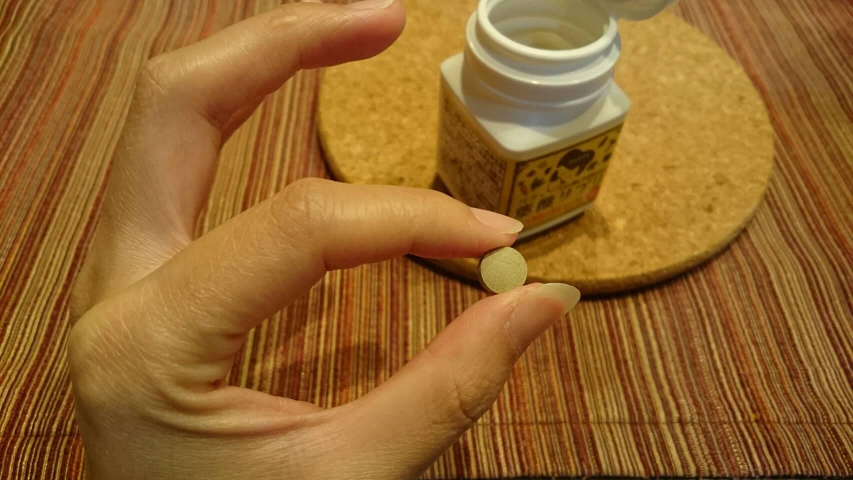 パティ葉酸サプリの粒